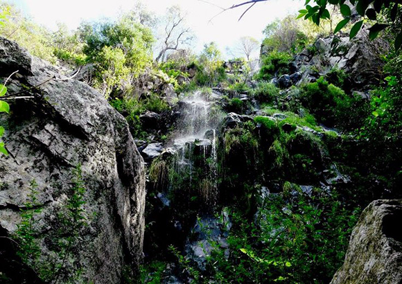 Disfruta de la naturaleza de Córdoba viajando en AVE