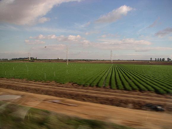 Los viajeros de los trenes AVE de Albacete aumentaron un 4% en 2017